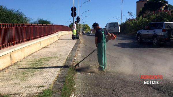 Vivaio Forestale Sicilia : Forestali news la festa dell albero gli appuntamenti in sicilia